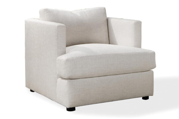 design classic 1107 lounge chair